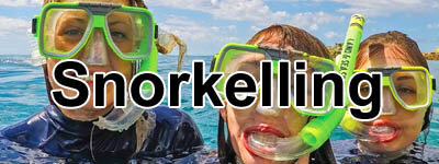 snorkel sets and snorkelling gear in coffs harbour, grafton, lismore and ballina, plus dive fins
